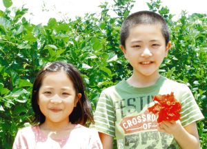 祖父の畑で見つけた薬草の特徴や効能を調べる(右から)仲宗根泰向君、彩葵さん=西原町